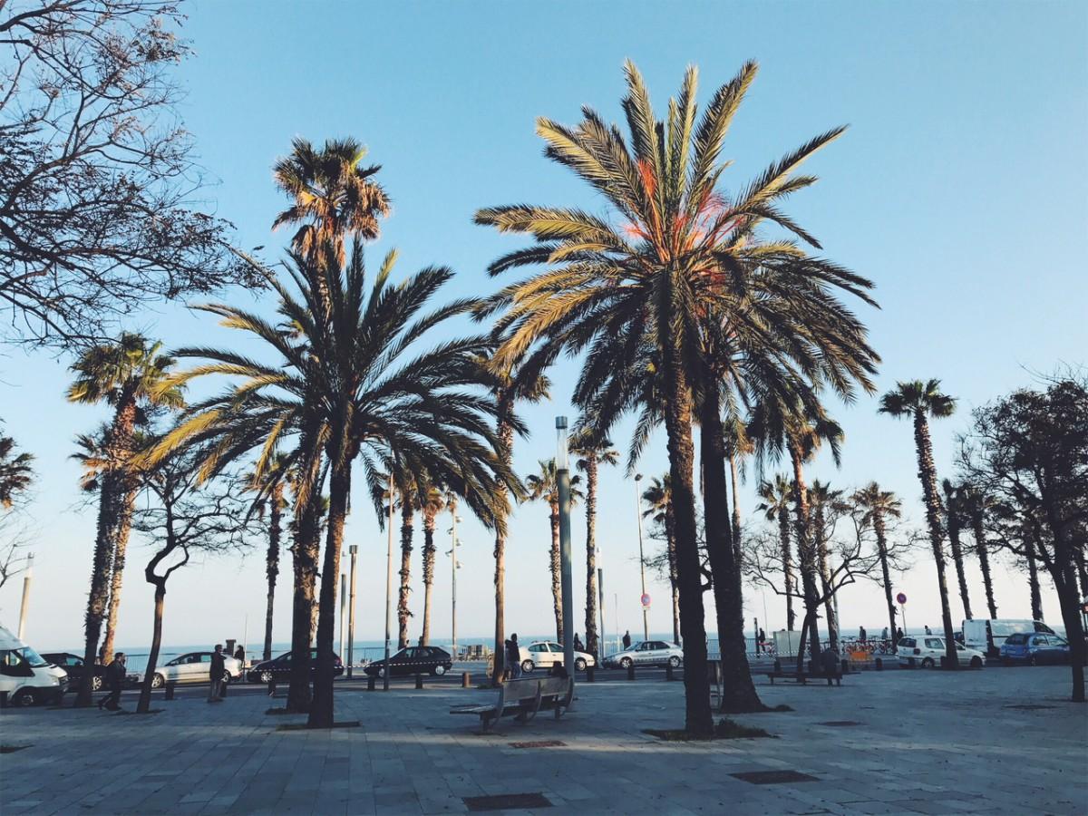 De favoriete bierhotspots in Barcelona van Blonde on a Bike